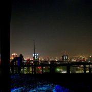 Night Glow 3